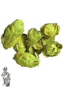 Green Bullet NZL hopbloemen 125 gram
