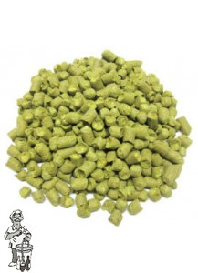 Saaz CZ hopkorrels 100 gram