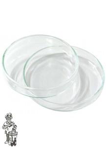 Petrischaal glas 80 X 15 mm.