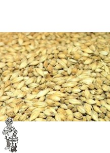 Golden Promise Malt 25 kg ( Thomas Fawcett & Sons) 5 EBC