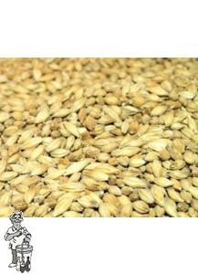 Golden Promise Malt 20 kg ( Thomas Fawcett & Sons) 5 EBC