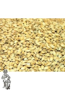 Maris Otter Malt  Low Colour pale ale malt ( Thomas Fawcett & Sons) 3.8 EBC  1 kg