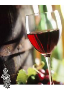 Wijnmaken Startpakket 10 liter Universeel