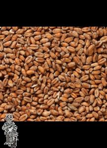 Weyermann® Organic Tarwemout licht 3-5  EBC  1 kg