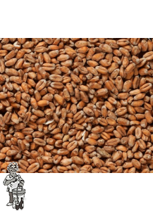 Weyermann® Diastase Tarwemout 3-5 EBC 1 kg