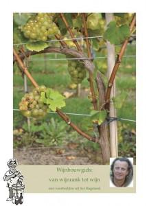 Wijnbouwgids : van wijnrank tot wijn H. Faes